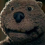avatar_mikrob